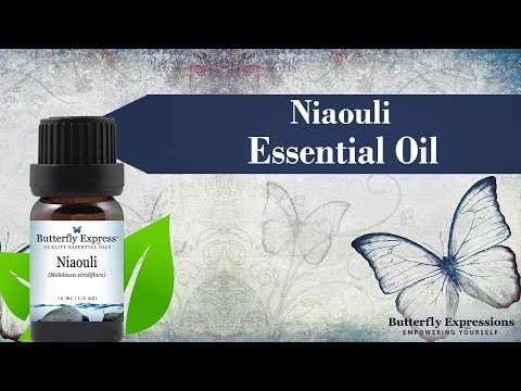 niaouli-essential-oil