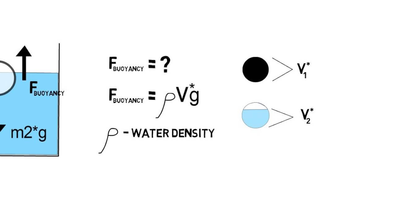 Uncategorized Archimedes Principle Experiment archimedes principle and buoyancy youtube buoyancy