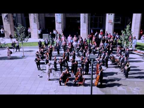 Huge symphonic & choir flashmob - Budapest, Hungary - Bánk Bán's Aria, My homeland, my homeland