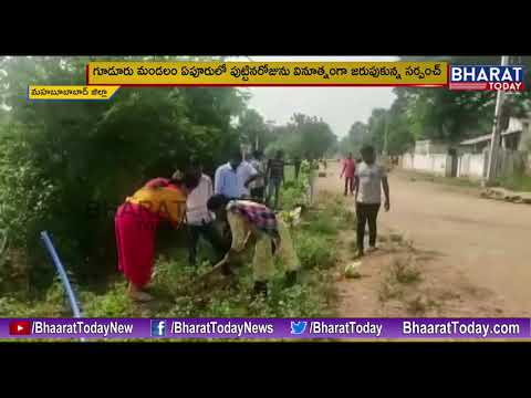 Guduru Sarpanch Mounika Plants Saplings On Her Birthday || Mahabubabad