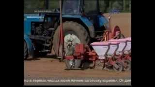 Медынские сельхозпроизводители планируют начать заготовку кормов