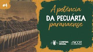 Cooperativismo e produção em escala na pecuária paranaense | Semana 3 - Confina Brasil 2021
