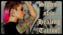 Signs of a Healing Tattoo! | BreeAnn Barbie