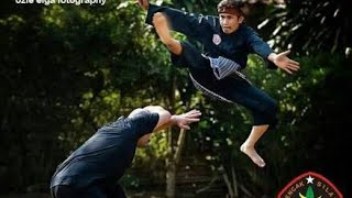 Video Silat Cimande the Deadly Pencak Silat Martial Art part#1 download MP3, 3GP, MP4, WEBM, AVI, FLV Mei 2018