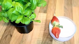 Strawberry Cold Milkshake | Strawberry Milkshake in 2 Minutes