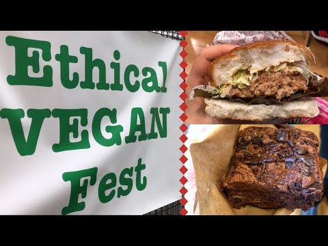 A Quick Look at a Rainy Vegan Festival in Osaka