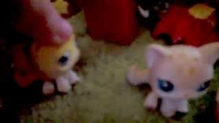 Lps Warrior Cats Into The Wild #33 Hymn Of The Immortal Warriors