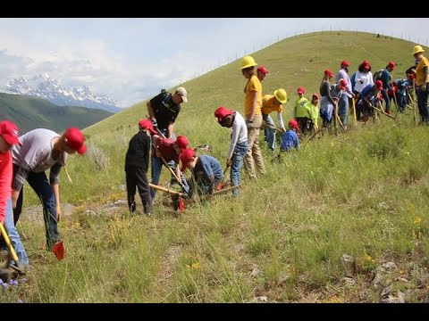 4th Graders and Families do Trail work on the Bridger-Teton National Forest