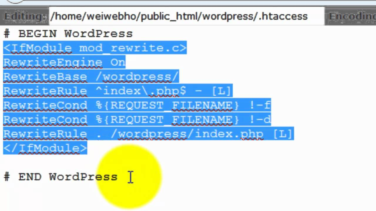 Wordpress permalinks not updating htaccess