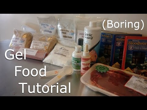 Gel Food Tutorial