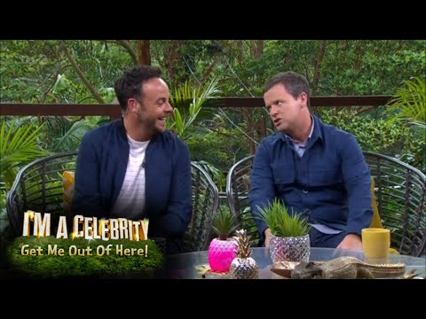 Ant and Dec Give Their Take on Strawberry-Gate | I'm A Celebrity... Extra Camp