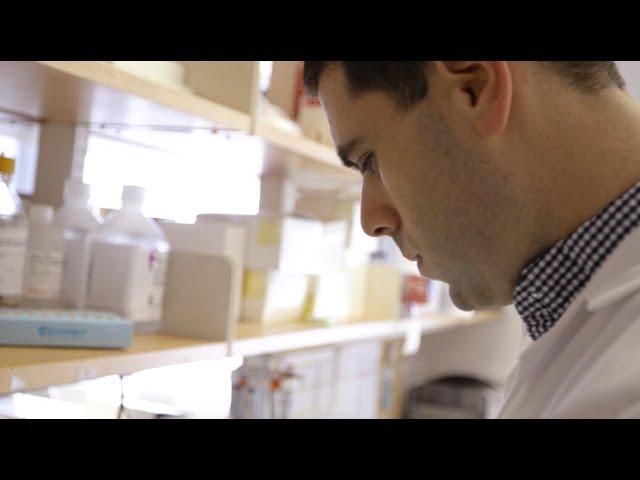 The PhD in Neuroscience Program