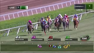 Vidéo de la course PMU PREMIO TOP MOVIE