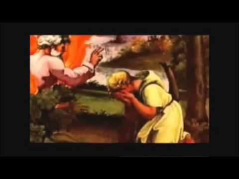 Secrets of the Mushroom, Psychic Abilities, DMT, and Religious Origins