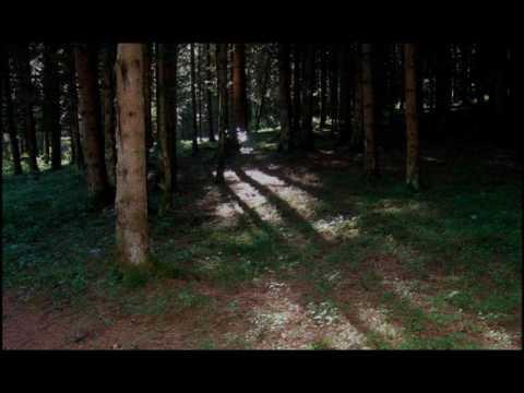 Artesia - Le Haut Bois