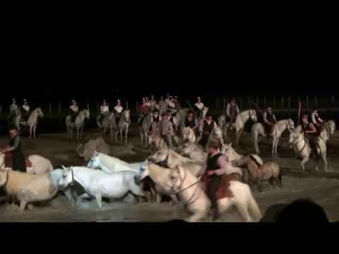 Songe d'une nuit en Camargue 2013