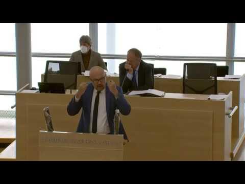 AfD: Herr Lippmann, Sie sind ein linker Volksverdummer!