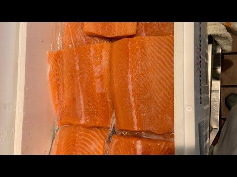 clean and cut salmon
