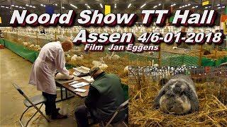 Noord Show TT Hall Assen 4tm6 01 2 18