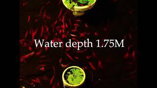 水深1.75M
