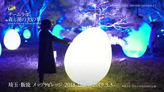 teamLab: Digitized Lakeside and Forest / チームラボ 森と湖の光の祭