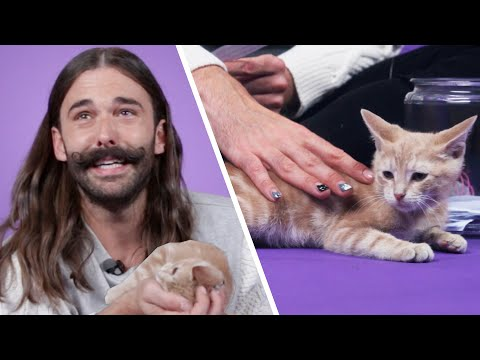 Samantha Scott - Jonathan Van Ness Plays With Kittens & Answers Fan Questions