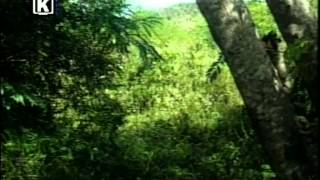 Aventura Cubanas Hermanos Parte 42