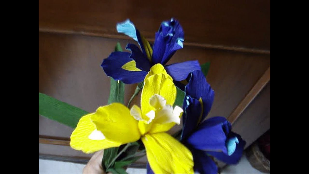How to make paper flowers iris flower 8 youtube how to make paper flowers iris flower 8 pronofoot35fo Image collections