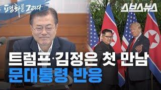 북미정상회담 / 트럼프∙김정은 만남의 순간, 문재인 대통령 실시간 반응
