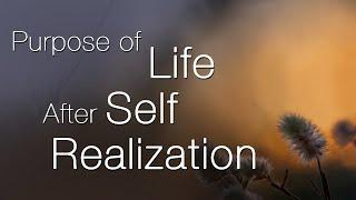 Propósito de la Vida Después de la Realización del Ser
