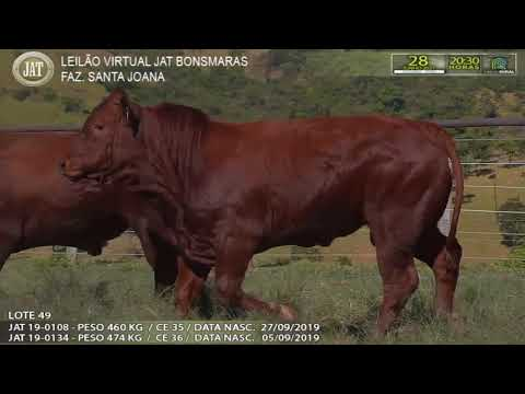 LOTE 049