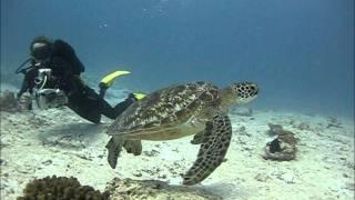 Maldives Southern Atolls July