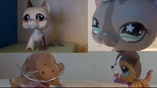 Lps My Hopeless Romance Season 2 Episode 4 {The Plan}