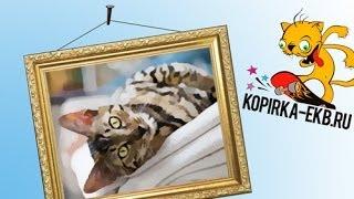 Как сделать картину маслом из фото? | Видеоуроки kopirka-ekb.ru