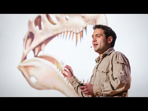 Nizar Ibrahim: How we unearthed the spinosaurus