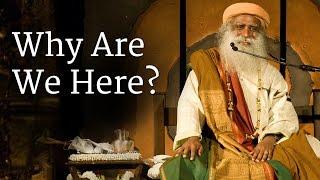 Why Are We Here?   Sadhguru