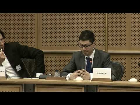 Deflating the Financial Carbon Bubble: A Presentation & Panel Debate on a Greens/EFA Study