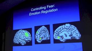 Elizabeth Phelps, PhD: Emotion and Decision Making