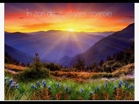 Iuliana Anitei-În zori de zi