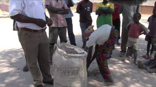 Accessing Seed in Zambia's Western Province