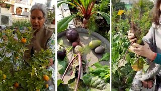 Become 'atmanirbhar' with organic gardening and farming at your home