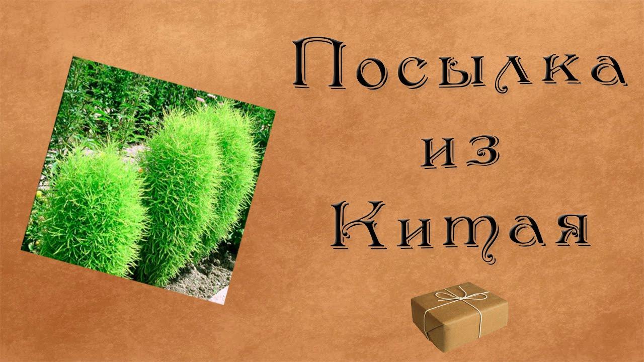 Леруа мерлен предлагает качественные товары для дома по выгодным ценам в москве. Купить семена цветов можно быстро и просто. Быстрая.