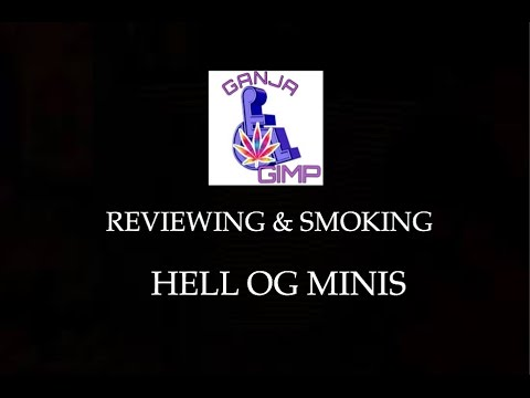 REVIEWING & SMOKING HELL OG MINIS