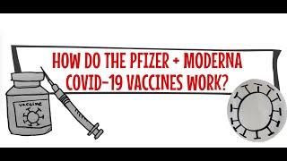 How do the Pfizer & Moderna Covid-19 vaccines work?