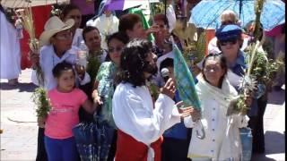Domingo de Ramos Manuel Doblado Guanajuato 2015