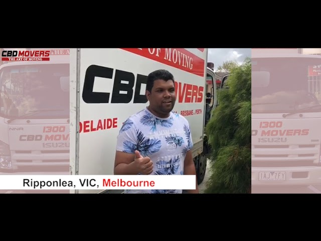 Get fast and right support of movers in Ripponlea, VIC