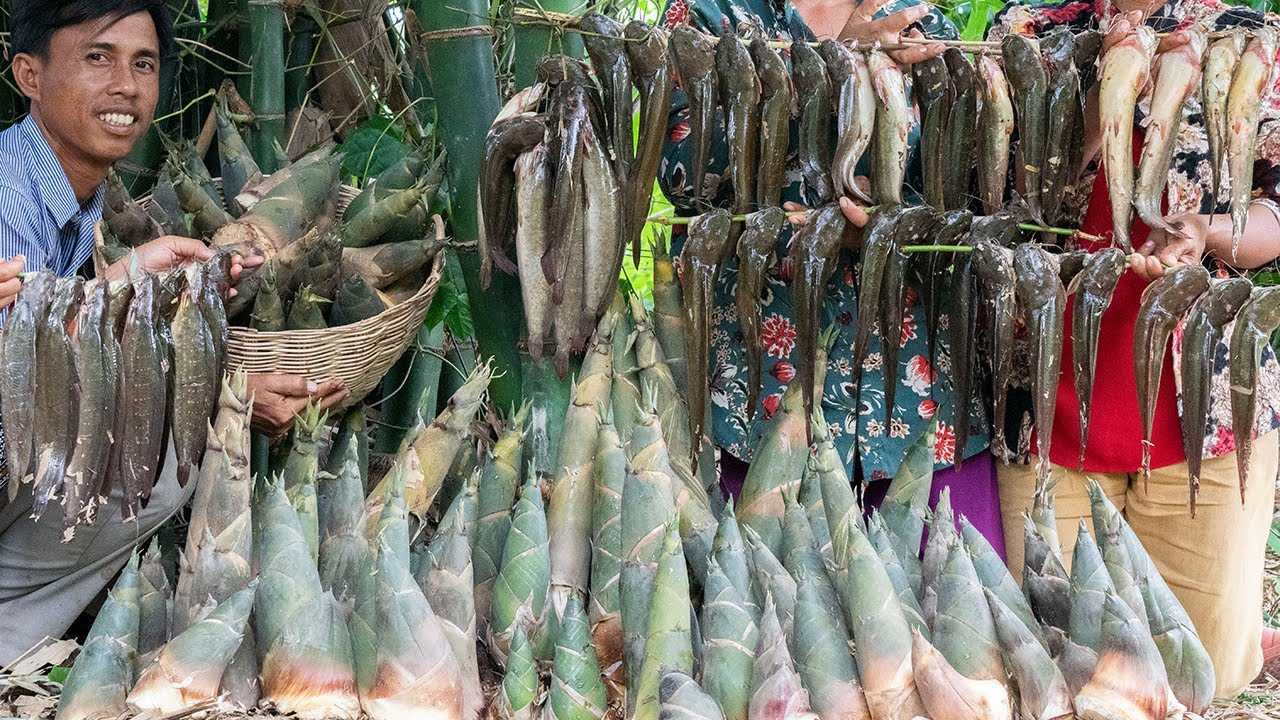 SPICY PICKLED 60KG of Bamboo Shoot with Deep Fried Clarias Macrocephalus Recipe - Cooking & Sharing