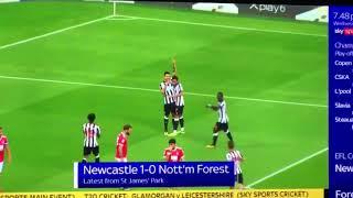 Newcastle news  DeAndre Yedlin credits Rafa Benitez coaching for form   Daily Star