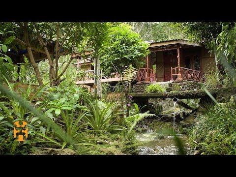 Ecotourism in Northern Sumatra | Indonesia Discoveries | World Nomads