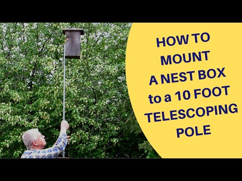 How To Mount A Nest Box On A 10 Foot Telescoping Pole Made Of Conduit 2019